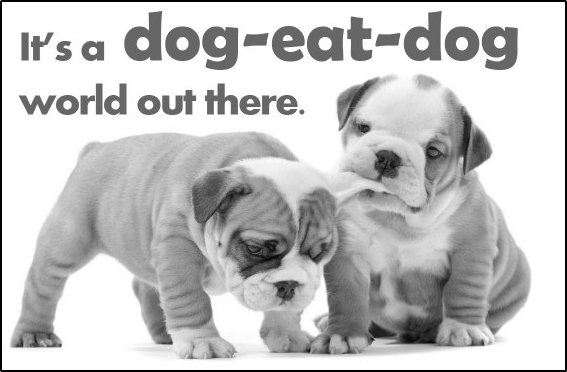 dog eat dog world meaning